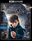 Fantastic Beasts And Where To Find Them (4K UHD Blu-ray + Blu-ray)